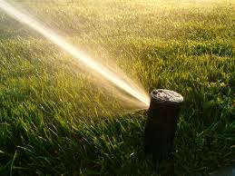 a situation witgh the sprinklers